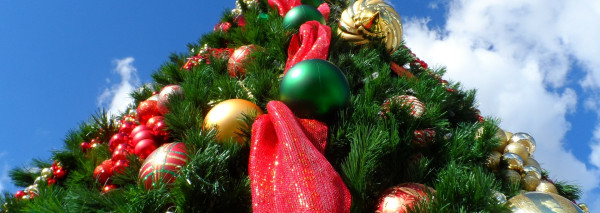 Evolutiza les desea… ¡Feliz Navidad!