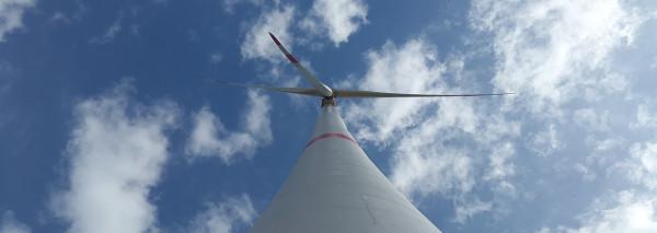 Innovaciones en el sector medio ambiental e I+D+I